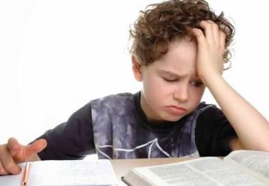 Ձեր երեխան չի՞ ուզում կատարել դասերը․ Ահա, թե ինչպես լուծել այդ հարցը