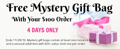 Black Friday: Free mystery gift back with $100 Bawdy Bookworms purchase