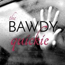 The Bawdy Quickie: monthly subscription filled with travel friendly lubes, lotions, and sex toys