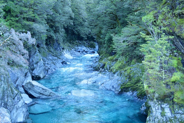 Blue Pools of Haast