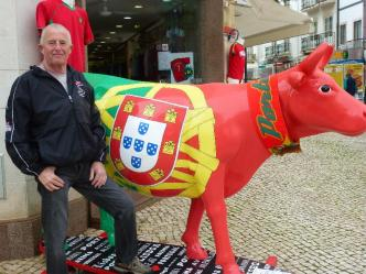 With the 'surfing cow'