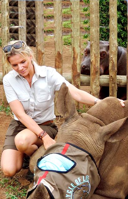 Dehorn a Rhino