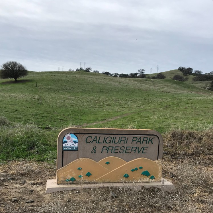 Caliguiri Park & Preserve. Green, rolling hills with power lines traversing the tops are in the background. A sign with the park's name and an artistic rendering of the hills is in the foreground.