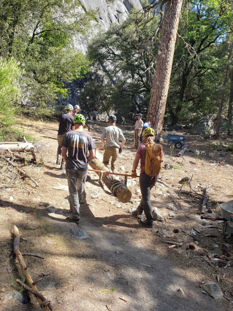 Volunteers use slings and rods to carry a log down a trail