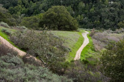Pulgas Ridge Trail From Above