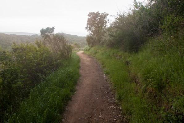 Pulgas Ridge Wide Angle Early10