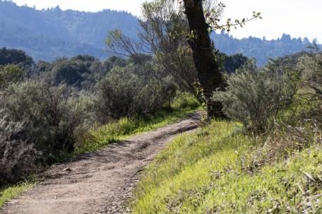 021417sun-trail
