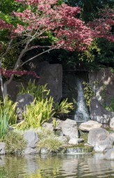 032817japanese tea garden waterfall