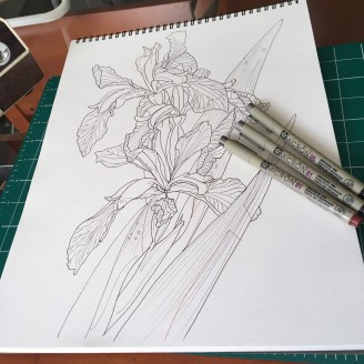 052217iris-work in progress_3