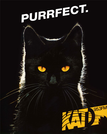 katd_purrfect-cat_ad_2000