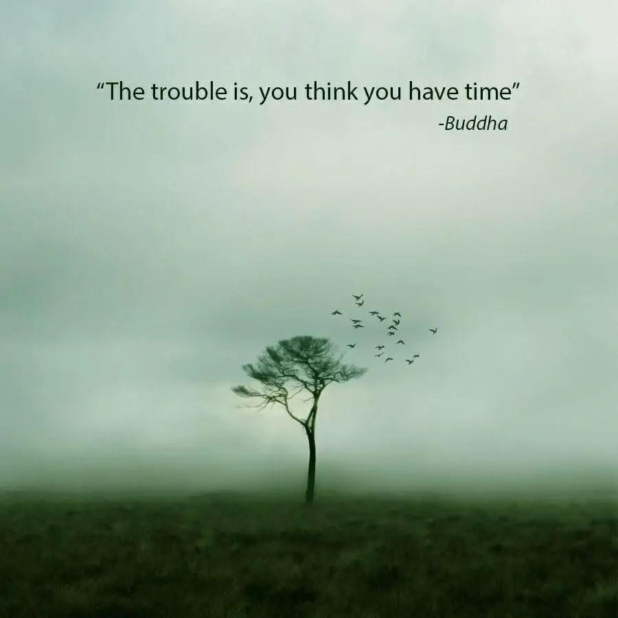 Image of: Happiness Gautama Buddha Quotes Bayart 100 Clever Buddha Quotes Really Worth To Read Bayart