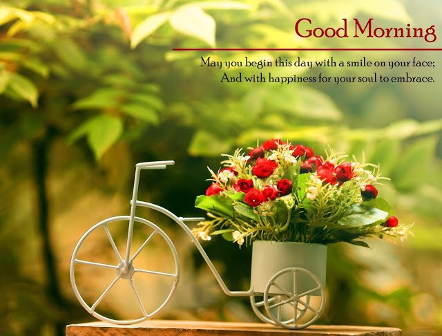 good morning images for lover: May you begin this day with a smile on your face; And with happiness for your soul to embrace