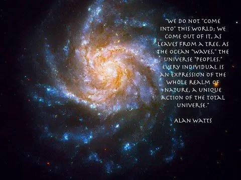 wonderful alan watts quotes