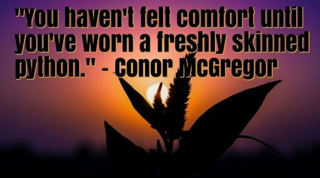 conor mcgregor hard work quote
