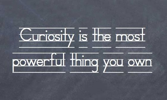 curiosity sayings and quotes