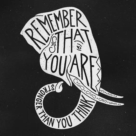 white elephant quotes