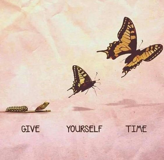 inspirational butterfly quotes