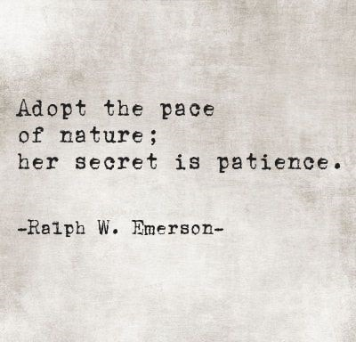 patience quotes images