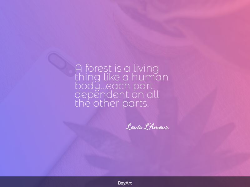 greatest forest quotes