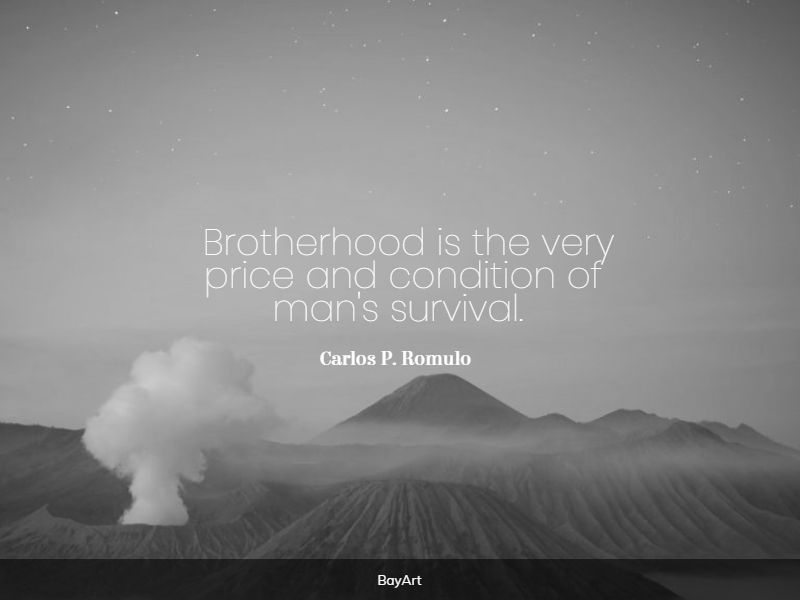 popular brotherhood quotes