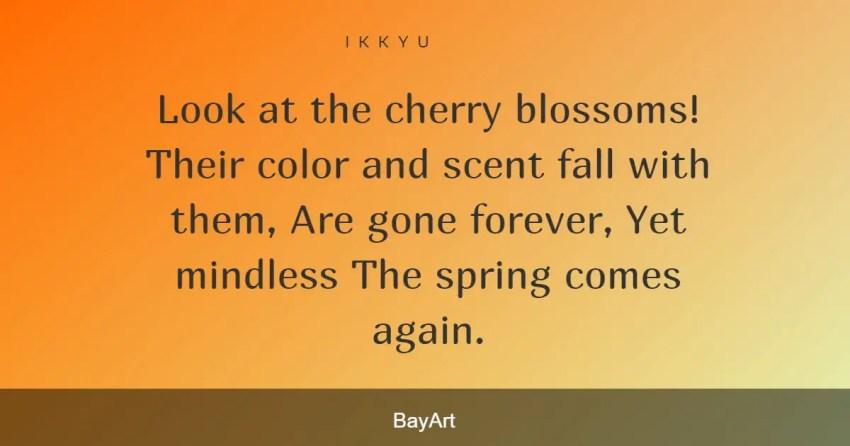 cherry blossom quotes