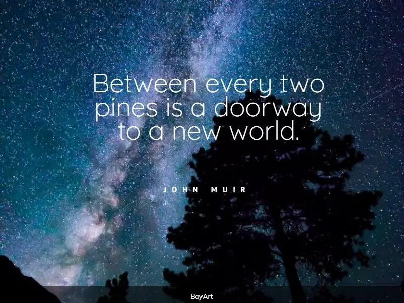 greatest tree quotes