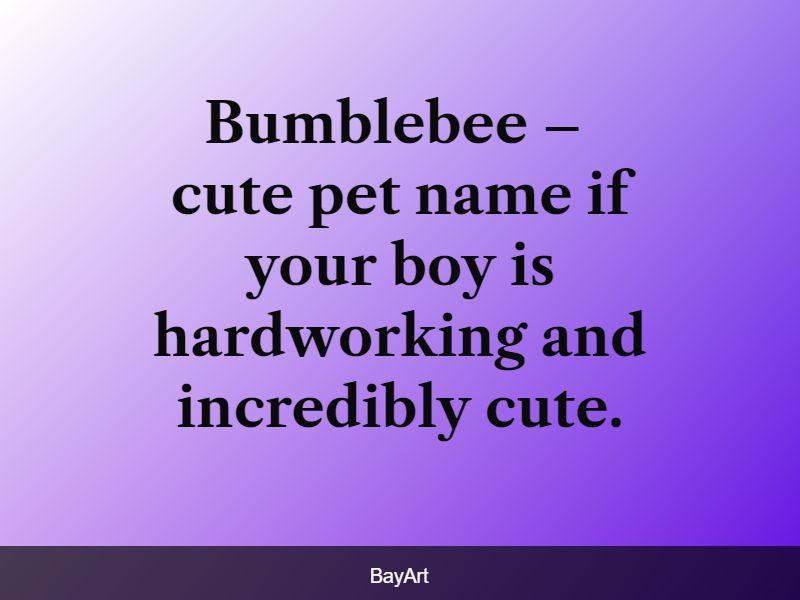 cute pet names for boys