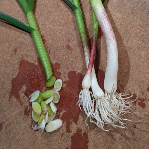 green garlic on a cutting board