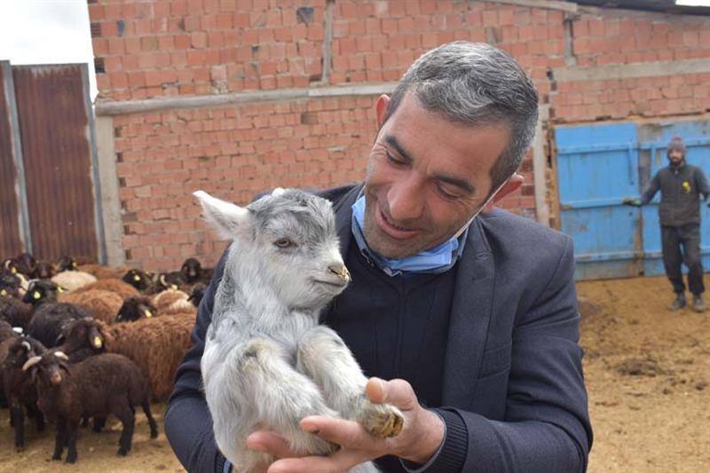 Bayburt'ta sürü yönetimi elemanı (çobanlık) kursu
