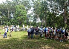 Nelligen bush cemetery