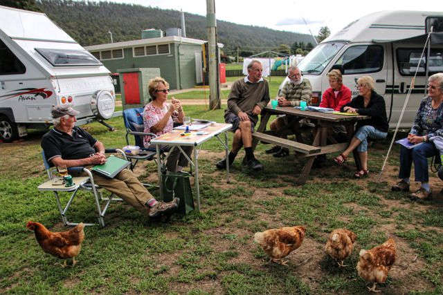 Happy Hour at Mole Creek Campsite