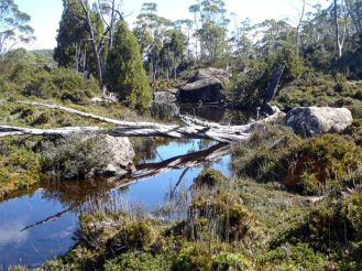 One of a string of mountain tarns called Solomon's Jewels in Walls of Jerusalem National Park