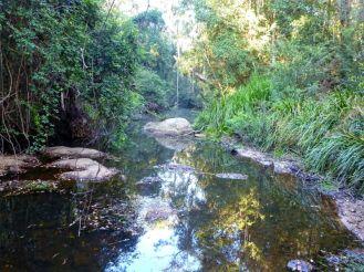 Tracks and Mines Near Moruya | BATEMANS BAY BUSHWALKERS INC