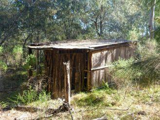 Abandoned bark hut