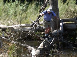 Len opted for the log bridge crossing