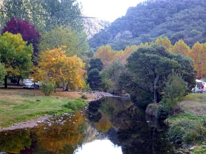 Autumn comes to Micalong Creek campsite