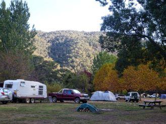 Camping bushwalkers
