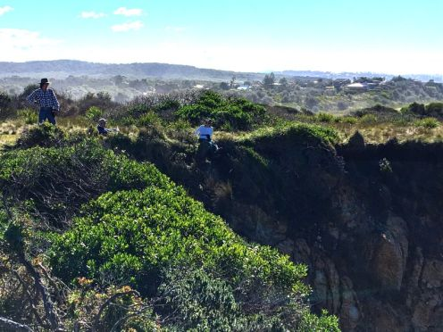 Clifftop lunch at Jemisons Point
