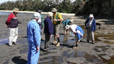 Looking for fossils