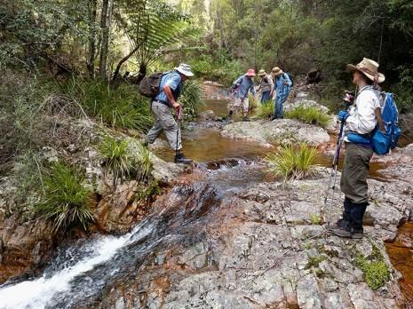 Our intrepid leader Len crosses Diamond Creek above Waterfall No 3