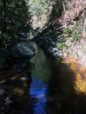 The creek narrows