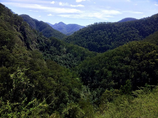 View from the rocky ledge overlooking Waterfall No 4