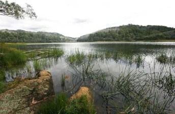 The lake at peace
