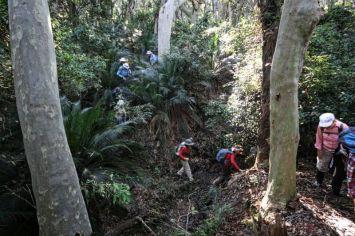 Climbing through the gully