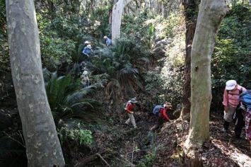 Climbing through the gully