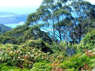 Filtered views on climb