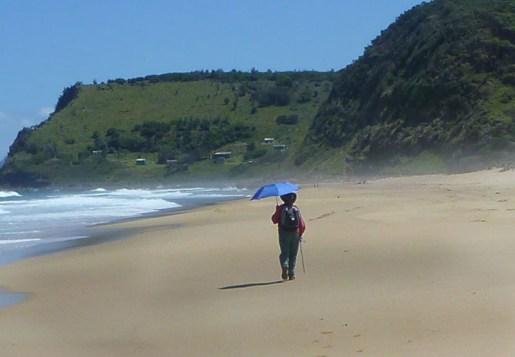 An experienced bushwalker always carries an umbrella!
