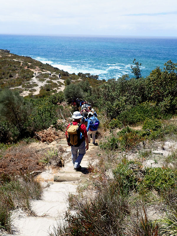 The group on their way down to the beach via the headland.