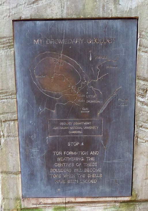 One of a number of Geological survey plaques sighted on the way up Gulaga.
