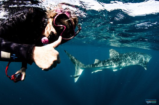 Mary with her first Whale Shark.